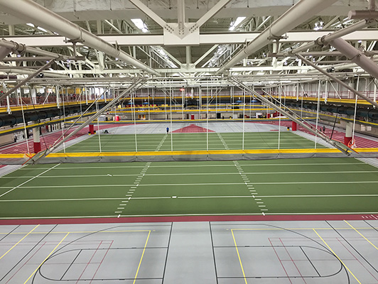 Indoor Turf Artificial Astro Synthetic