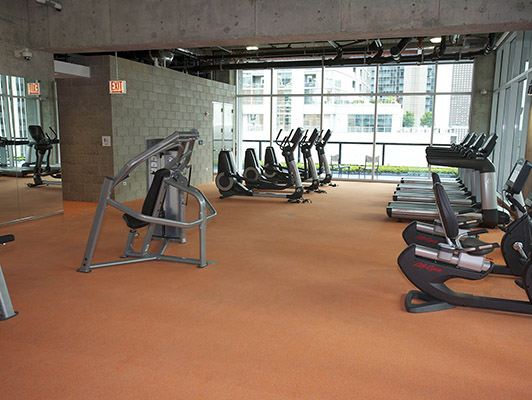 Optima Chicago Center - Exercise Flooring | Workout Room Flooring