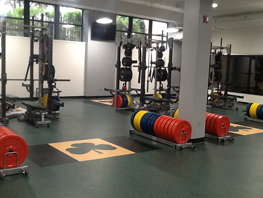 St Patrick Catholic High School Weight Room Flooring