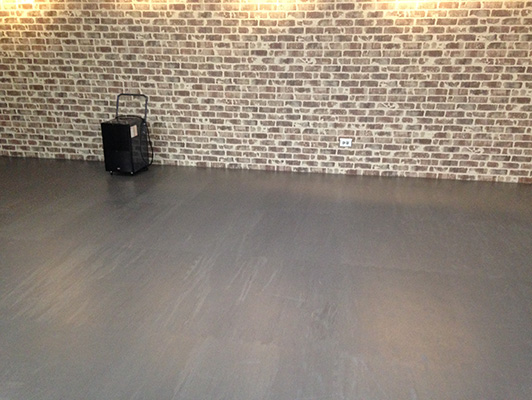 Elmhurst Park District - Group Dance Flooring