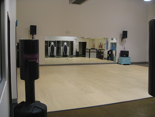 Pavigym - Group Dance Flooring