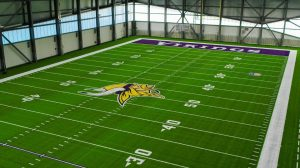 Minnesota Vikings artificial turf field